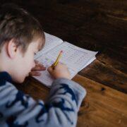 Plano de estudos para as crianças